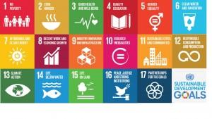 SDGs-Einzelpiktogramme